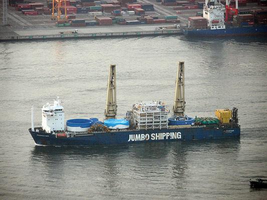 Precious cargo arrives after a 5,000 mile sea journey