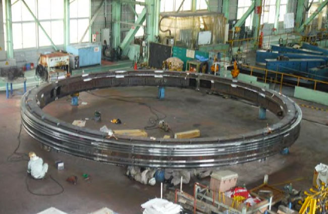 Outer ring seal  assembly in Japan