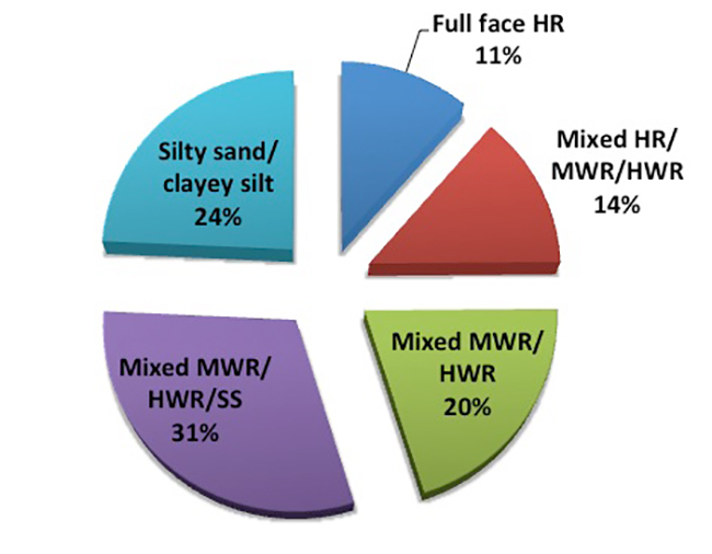 Fig 2. Percentages of the various face conditions