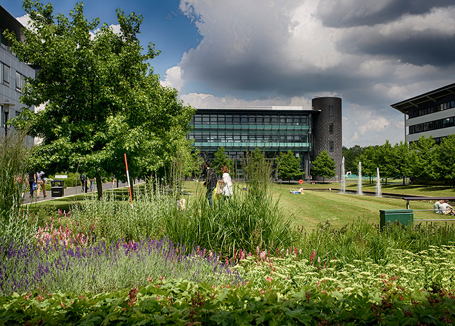University of Warwick campus
